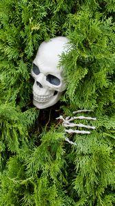 Preview wallpaper skull, skeleton, bush, funny, halloween