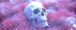 Preview wallpaper skull, skeleton, grass, pink