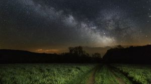 Preview wallpaper sky, grass, stars, night
