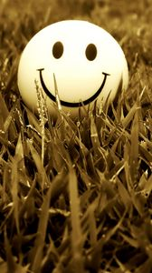 Preview wallpaper smile, grass, mood