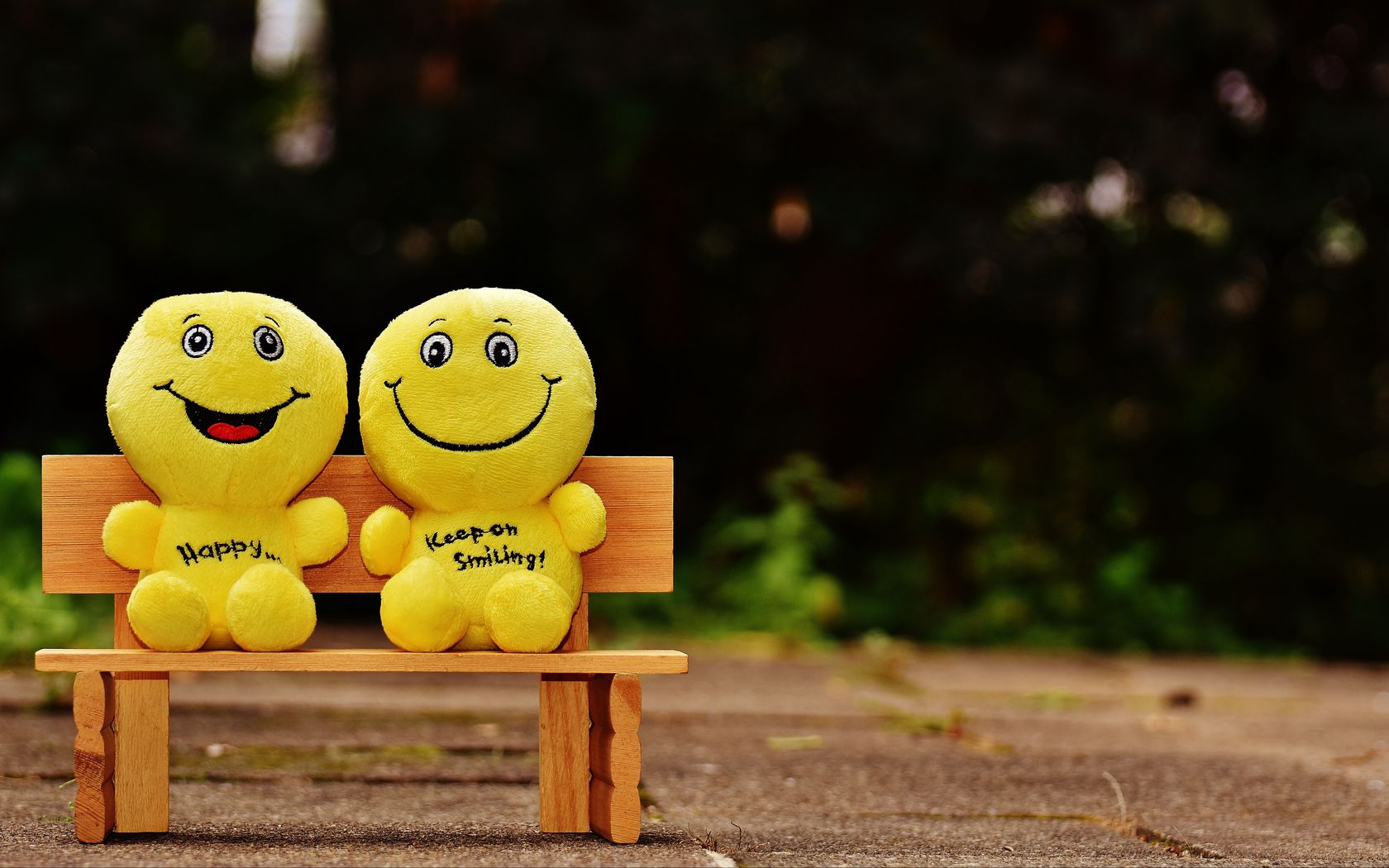 1680x1050 Wallpaper smiles, happy, cheerful, smile, bench, cute