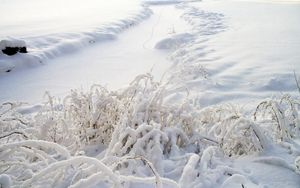 Preview wallpaper snow, grass, winter, cover