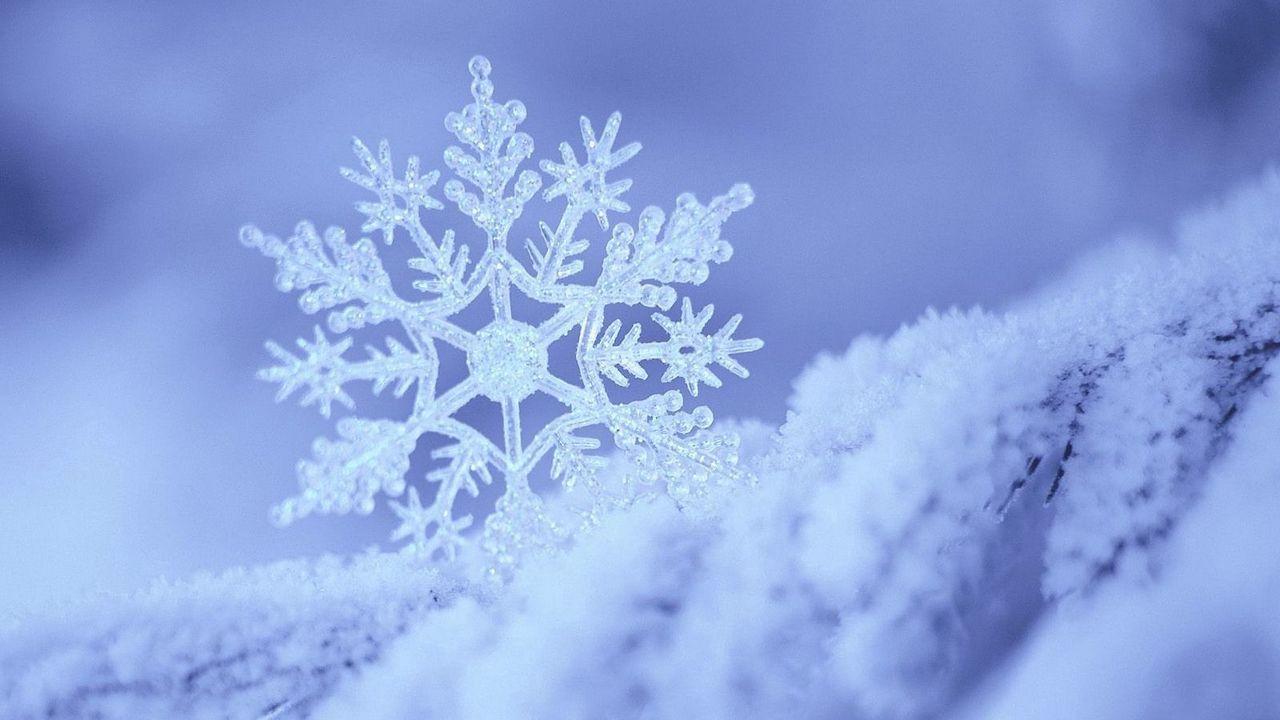 Wallpaper snow, snowflake, winter, form, pattern