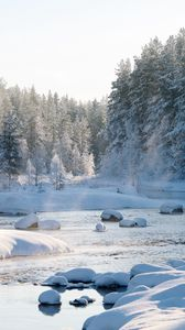 Preview wallpaper snow, snowy, forest, river, snowdrifts