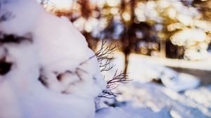 Preview wallpaper snow, twigs, winter