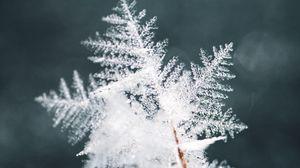 Preview wallpaper snowflake, snow, ice, macro, pattern