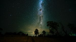 Preview wallpaper space, trees, starry sky