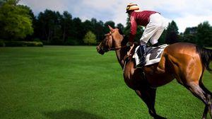 Preview wallpaper sports, equestrian, horse, rider