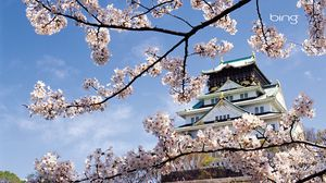 Preview wallpaper spring, cherry, blossom, palace, japan, architecture