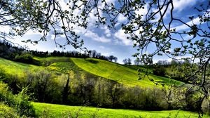 Preview wallpaper spring, fields, trees, greenery