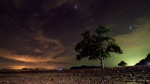 Preview wallpaper starry sky, tree, sand, night, koh lanta, thailand