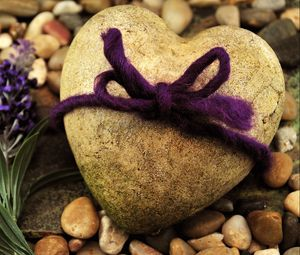 Preview wallpaper stone, flowers, beach, rope