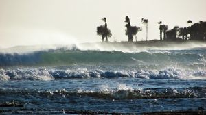 Preview wallpaper storm, sea, waves, palm trees