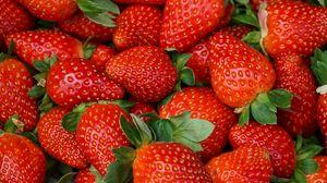 Preview wallpaper strawberries, berries, fresh, juicy, red