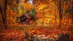 Preview wallpaper structure, autumn, foliage