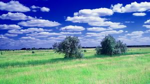 Preview wallpaper summer, field, grass, trees, clouds, sky