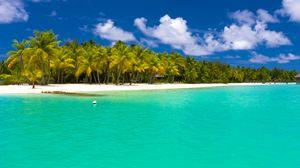 Preview wallpaper summer, maldives, tropical, beach, palm trees