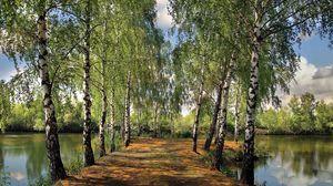 Preview wallpaper summer, pond, park, birch, landscape