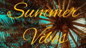 Preview wallpaper summer, vibes, palm, mood
