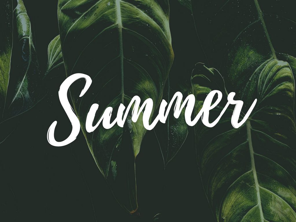 1024x768 Wallpaper summer, word, inscription, text, leaves