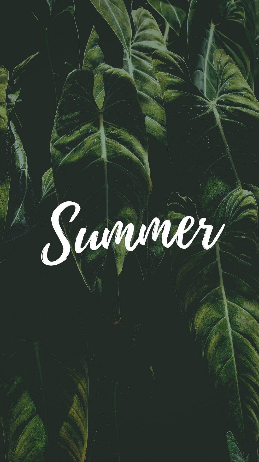 1080x1920 Wallpaper summer, word, inscription, text, leaves