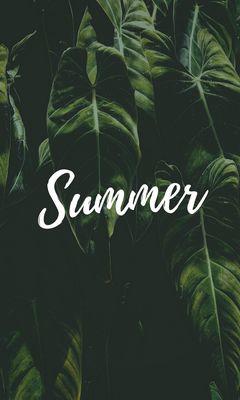 240x400 Wallpaper summer, word, inscription, text, leaves