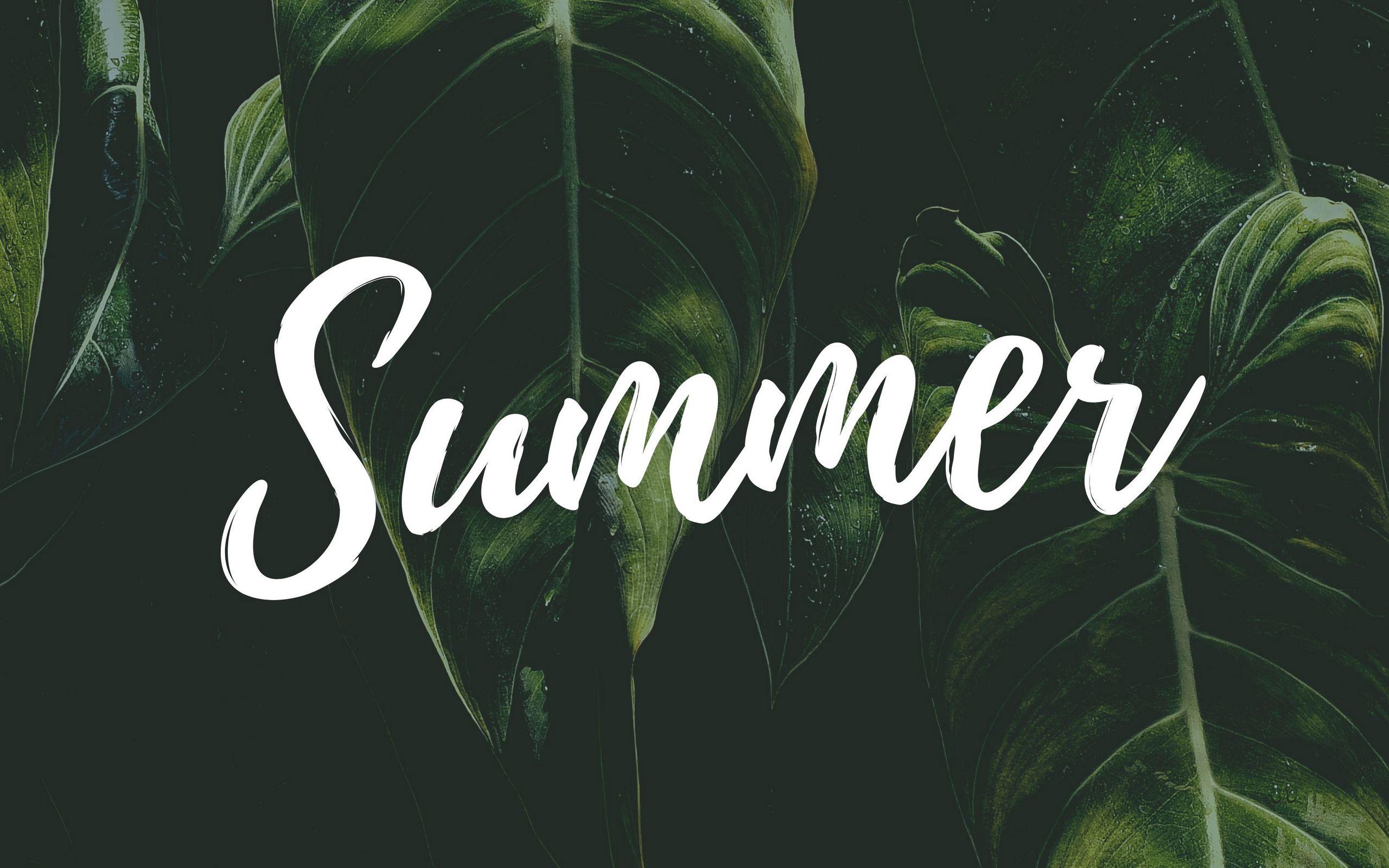 2560x1600 Wallpaper summer, word, inscription, text, leaves