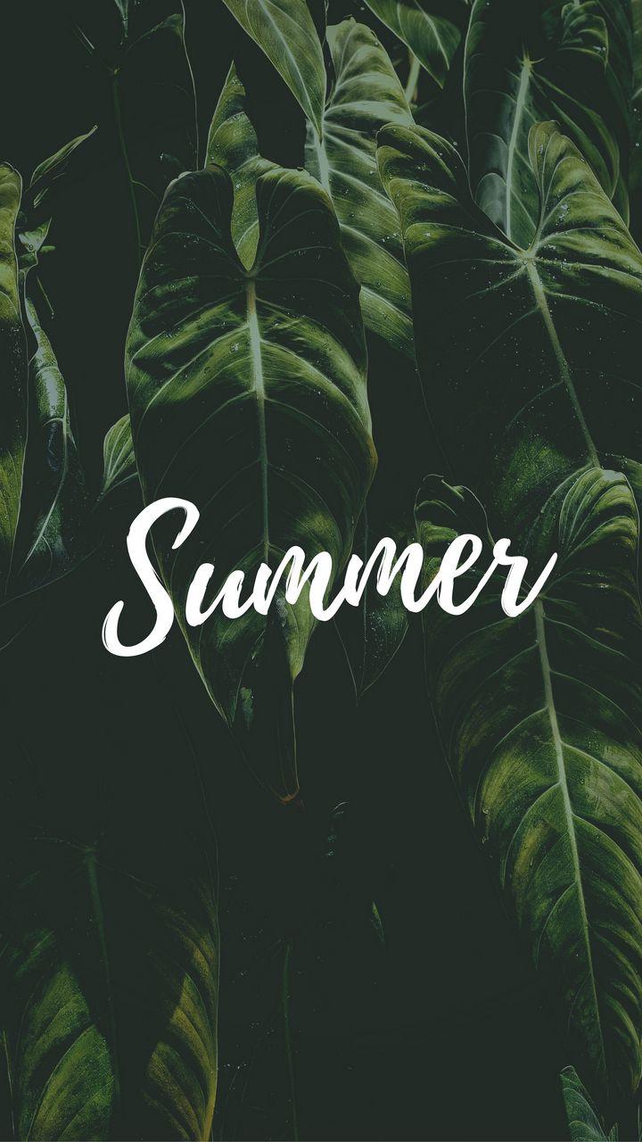720x1280 Wallpaper summer, word, inscription, text, leaves