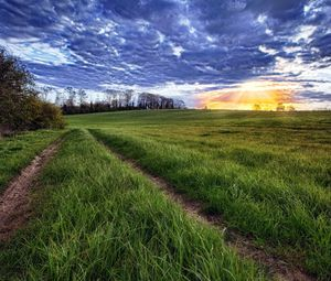 Preview wallpaper sun, light, beams, grass, field, road, traces, clouds, layer, evening, orange
