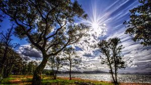 Preview wallpaper sun, light, clouds, colors, trees, coast, grass, green, spring