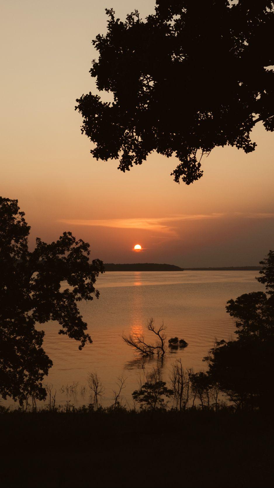 938x1668 Wallpaper sun, sunset, sea, trees, silhouettes, dark