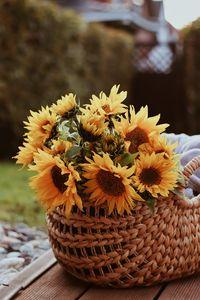 Preview wallpaper sunflower, flowers, basket, bouquet