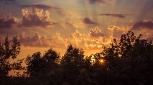 Preview wallpaper sunrise, sky, trees, clouds