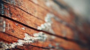 Preview wallpaper surface, wood, light
