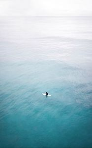 Preview wallpaper surfing, board, aerial view, sea