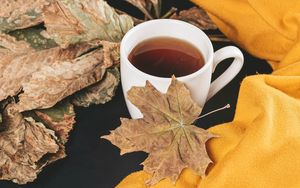 Preview wallpaper tea, cup, autumn, maple, leaves