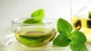 Preview wallpaper tea, green, leaves, mint