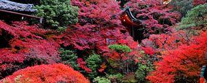 Preview wallpaper temple, autumn, japan, kyoto
