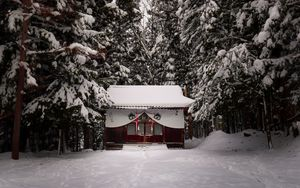 Preview wallpaper temple, forest, snow, winter, nature