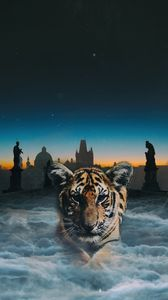 Preview wallpaper tiger cub, photoshop, clouds, night