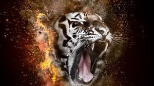 Preview wallpaper tiger, grin, photoshop, fire