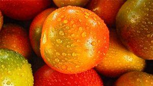 Preview wallpaper tomato, drop, vegetable