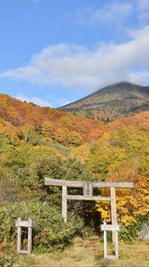Preview wallpaper torii, forest, mountains, landscape, japan
