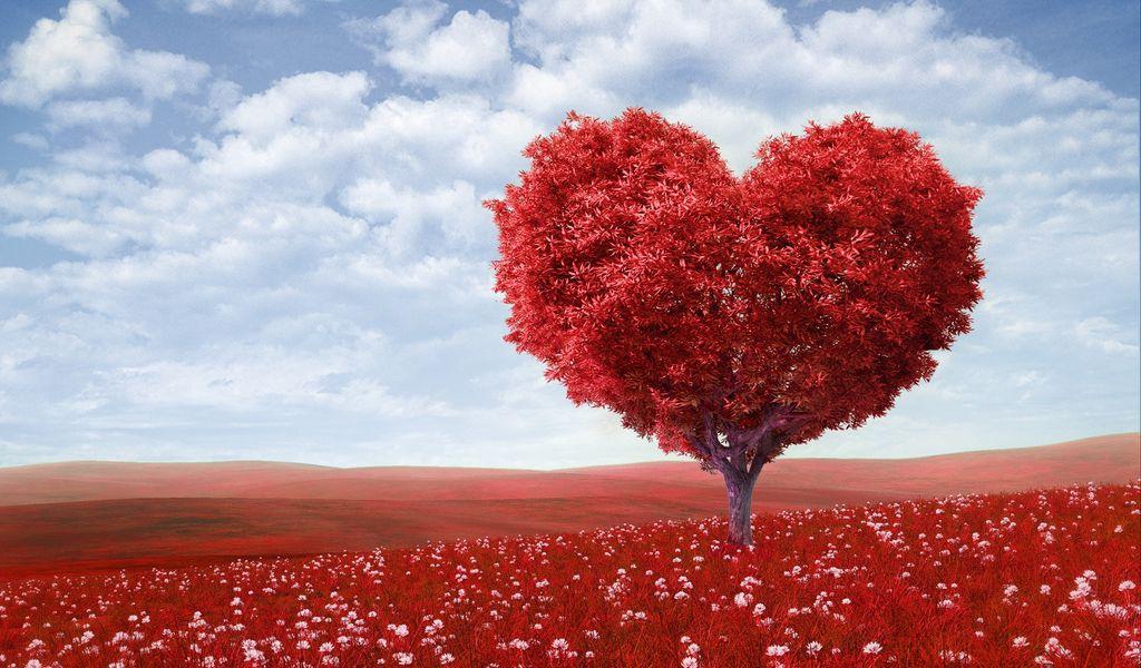 1024x600 Wallpaper tree, heart, photoshop, field, grass, romance