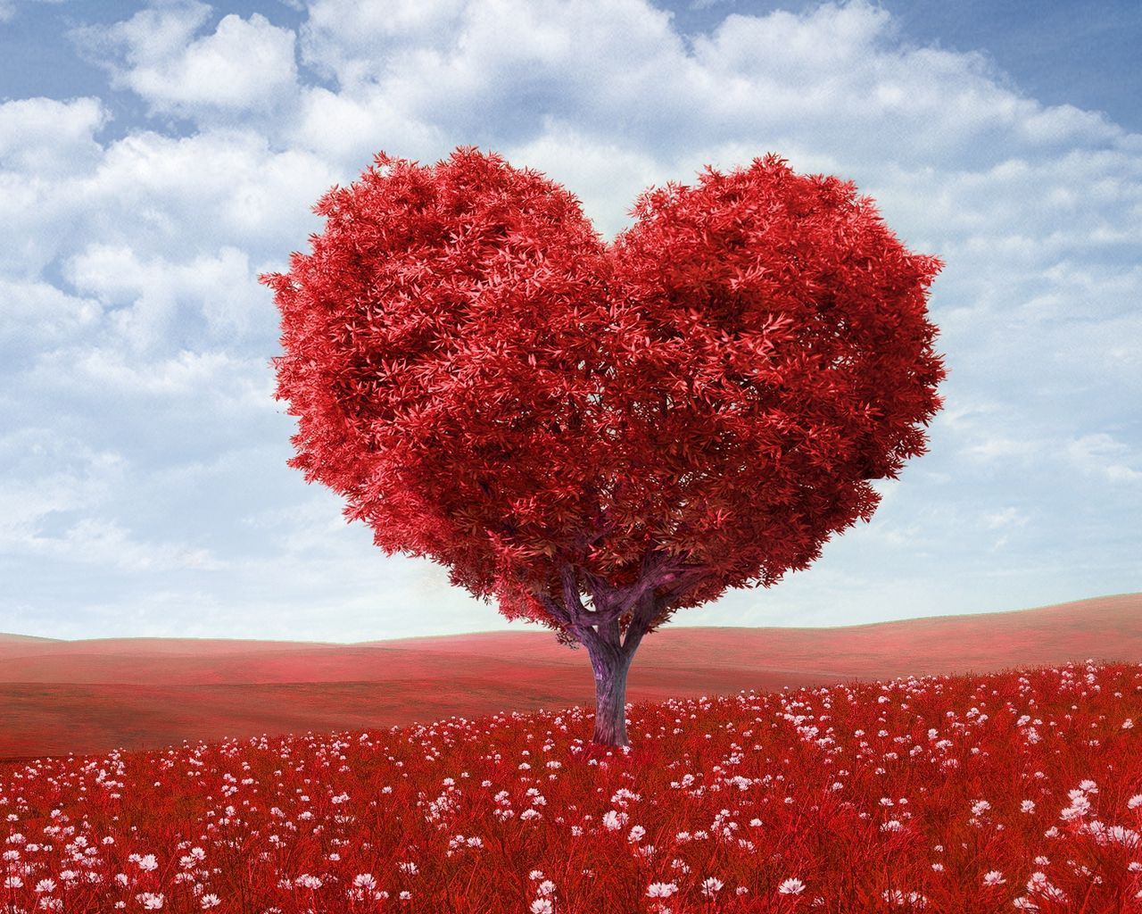 1280x1024 Wallpaper tree, heart, photoshop, field, grass, romance