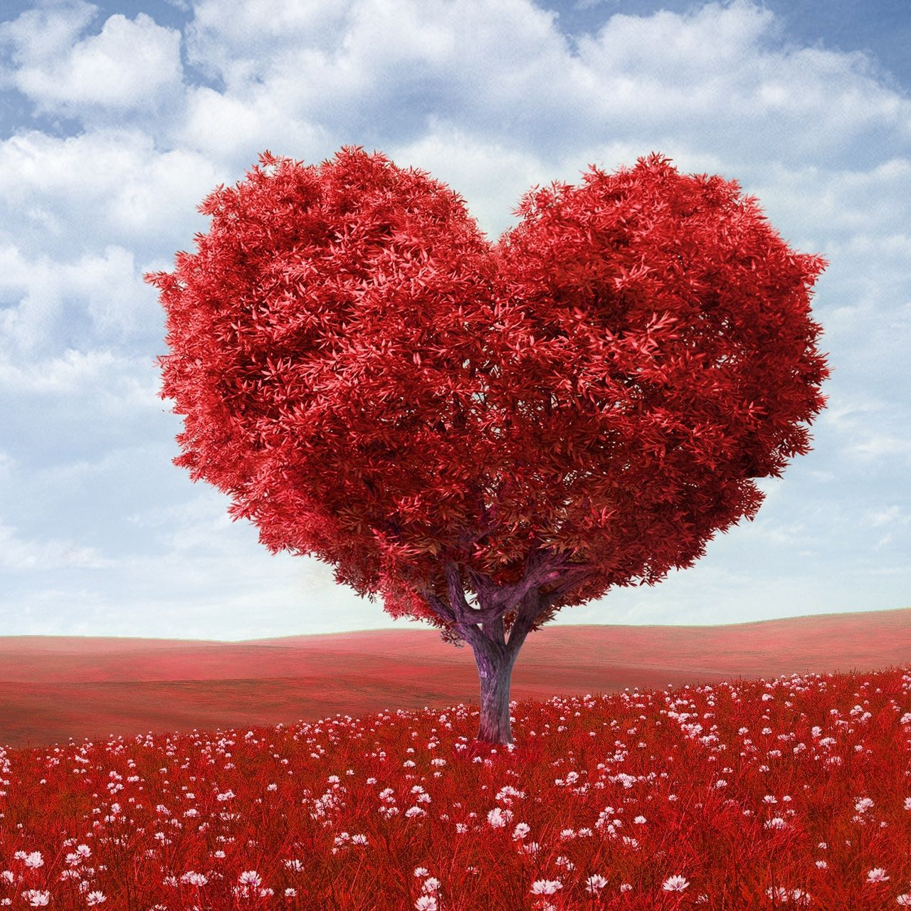 1280x1280 Wallpaper tree, heart, photoshop, field, grass, romance