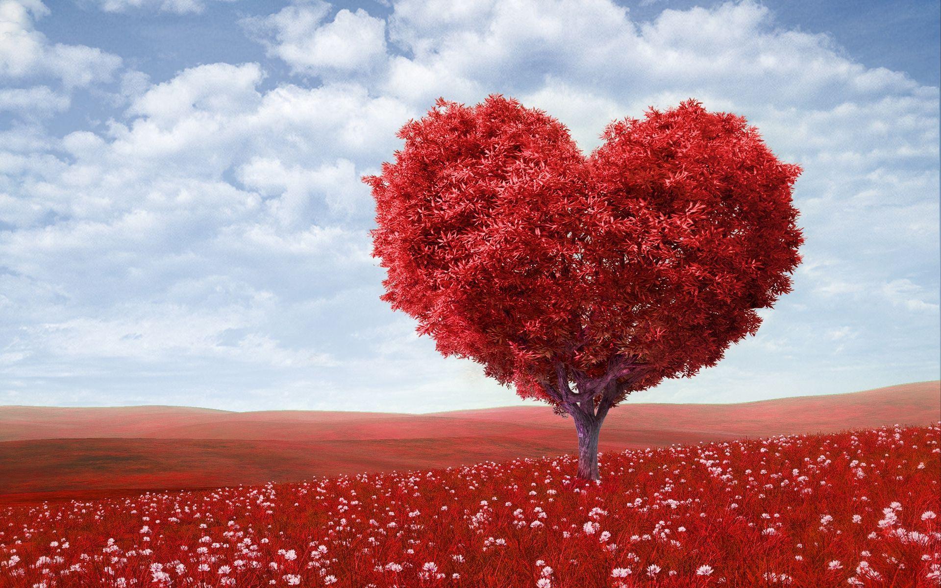 1920x1200 Wallpaper tree, heart, photoshop, field, grass, romance
