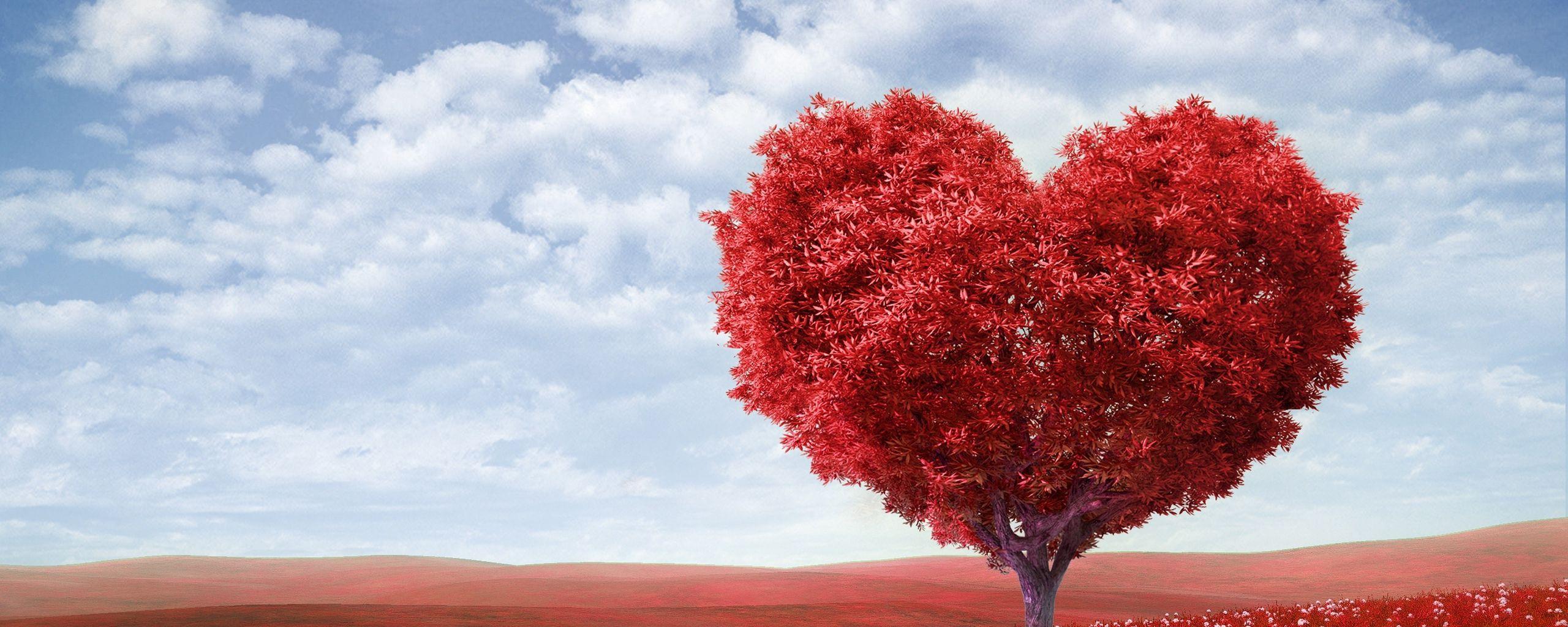 2560x1024 Wallpaper tree, heart, photoshop, field, grass, romance