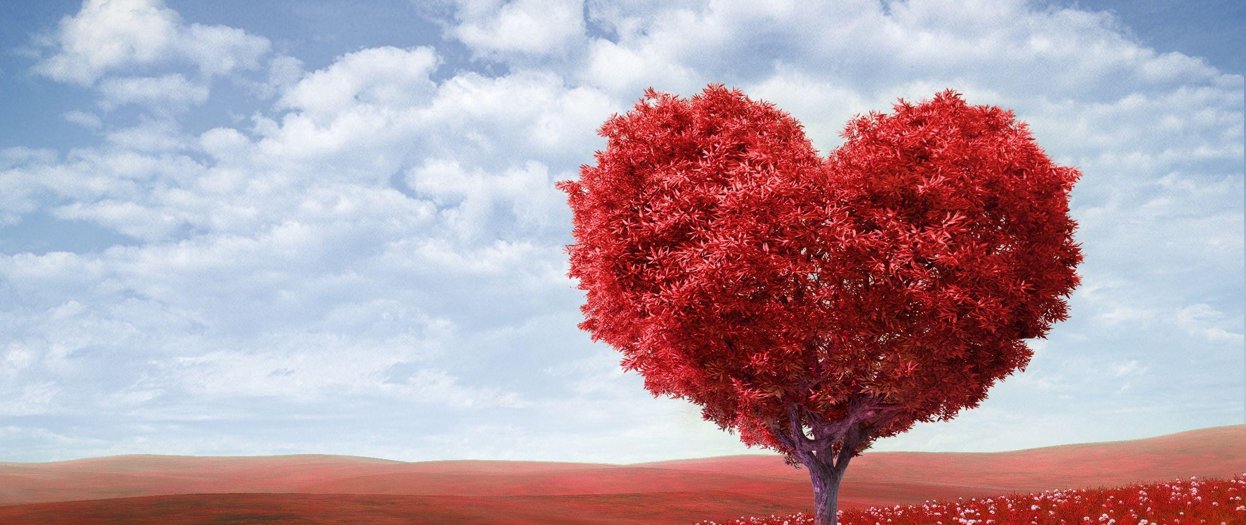 2560x1080 Wallpaper tree, heart, photoshop, field, grass, romance