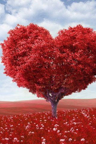 320x480 Wallpaper tree, heart, photoshop, field, grass, romance